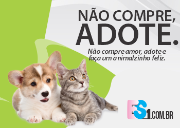 adote banner